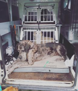 hondenuitlaatservice bus